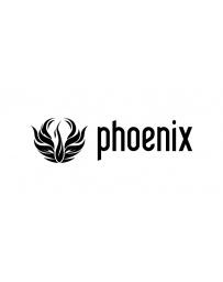 Phoenix 3ds Max